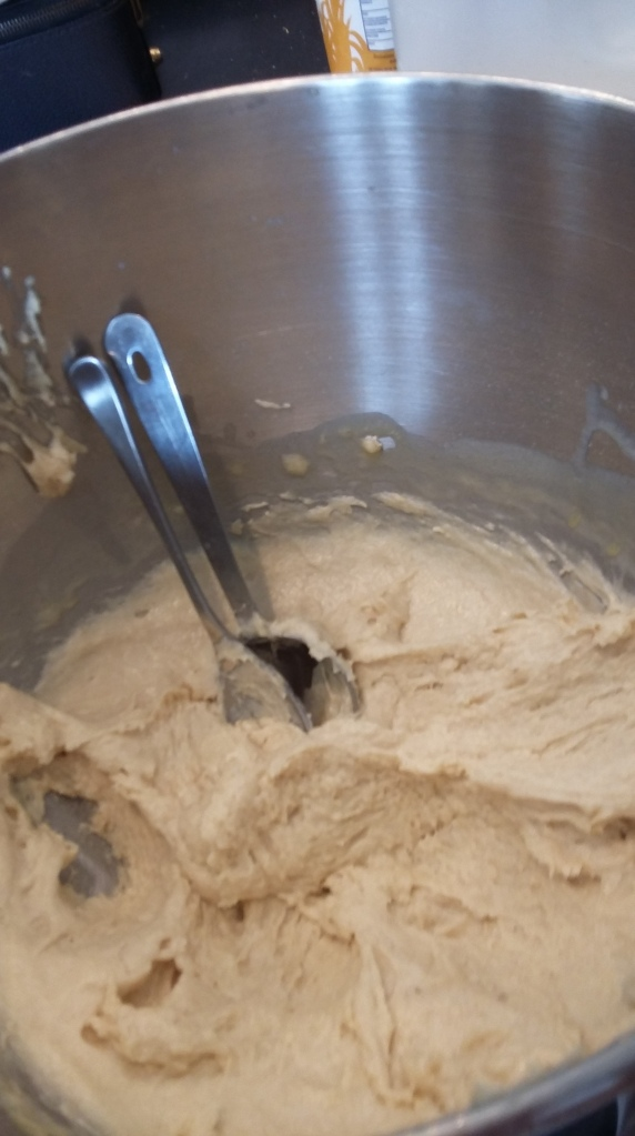 The dough is pretty springy  and easy to scoop. I used the whisk instead of the dough hook on my mixer.